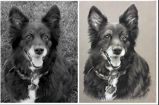 You will be satisfied and happy with the purchase of dog portraits post thumbnail image