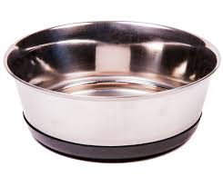 Understand Everything In Brief About Metal Dog Food Bowls post thumbnail image