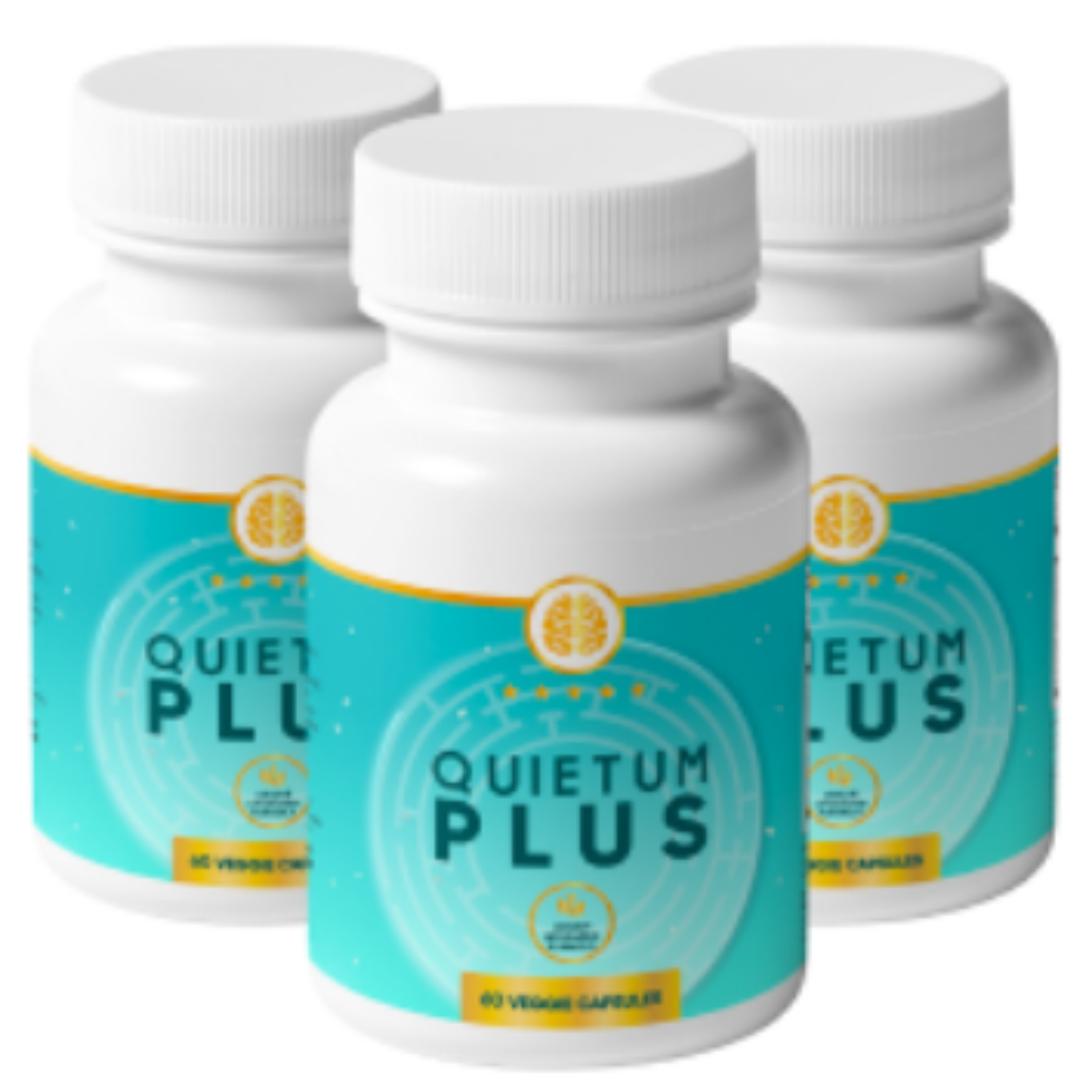 Quietum Plus, A Tested Product For Repairing Auditory Nerves post thumbnail image