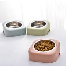 Trends in Dog Bowls post thumbnail image