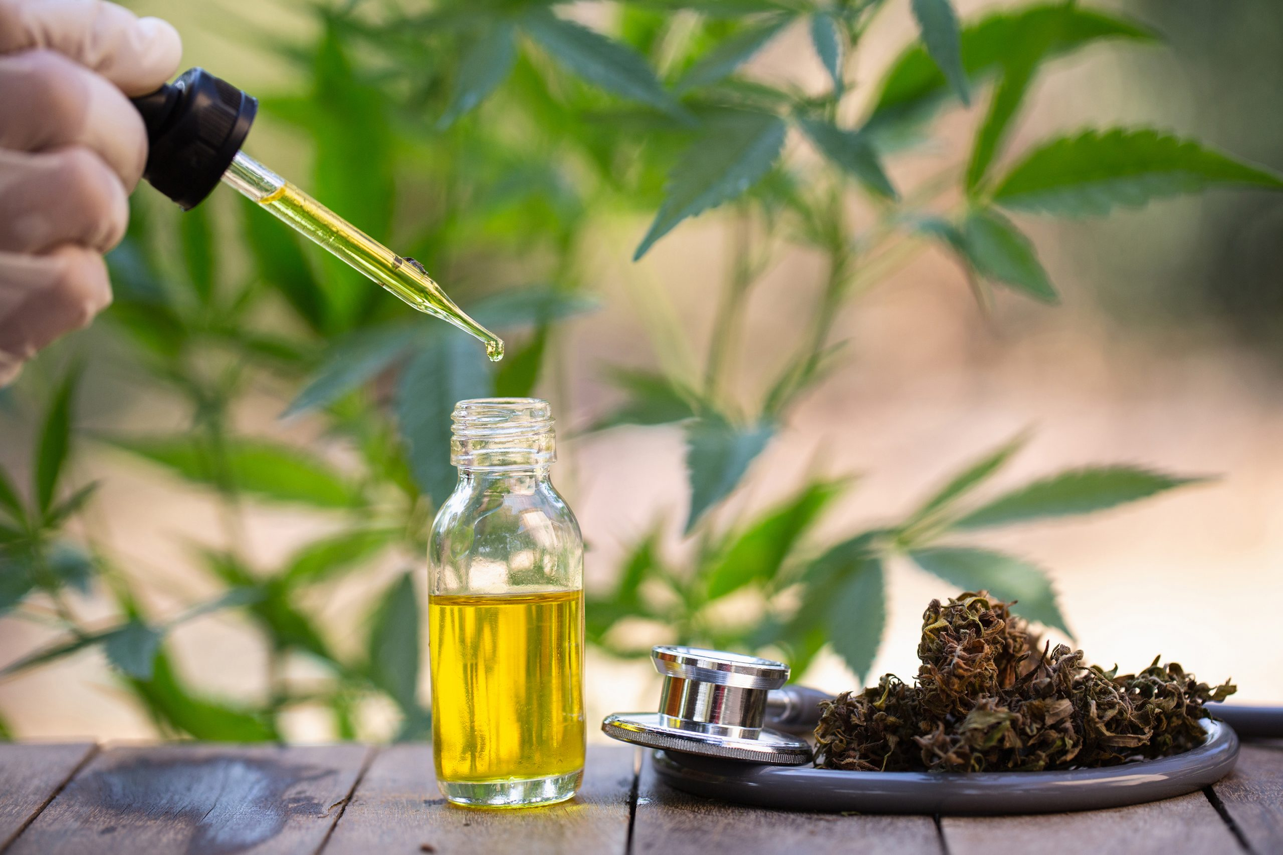 Try To Find The Best CBD Oil Online! post thumbnail image